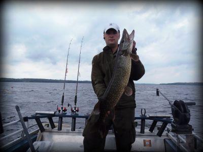 Välitti vapaudestaan ja taisteli vastaan, aivan kuin isompikin kala. Painoa hieman alta viiden kilon.